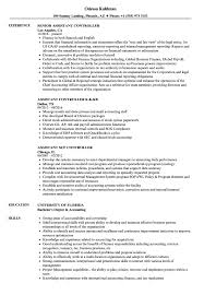 Controller Assistant Resume Sample As Image File