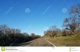 100 Truck Driver Lifestyle Trees US Route Driving Stock Image Image Of
