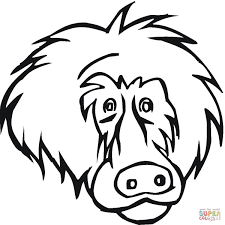Click The Face Of Baboon Coloring Pages