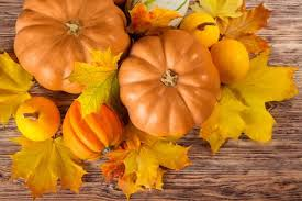 Pumpkin Patch College Station 2014 by Pumpkin Patch Hayrides Corn Maze And More Near Newark De