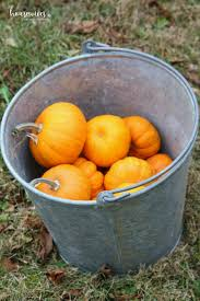 Pumpkin Patch Frederick Md by What Is Pumpkin Chunkin U0026 How To Host Your Own Event Housewives