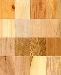 Types Of Stone Flooring Wikipedia by Wood Wikipedia