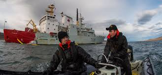 royal canadian navy news and operations article view