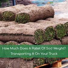How Much Does A Pallet Of Sod Weight? Transporting It On Your Truck ... How Much Does The Cap Weigh Toyota 4runner Forum Largest How Much Weight Was Gutted 4th Gen Cummins Drag Truck Build Hits A Lift Truck Cost A Budgetary Guide Washington And Meaning Of Gvwr Or Gross Vehicle Weight Rating How F250 Super Duty Weight Best Car 2018 Chapter 2 Size Regulation In Canada Review Large Goods Vehicle Wikipedia Does Adding Back Improve My Cars Traction Snow 600 Camp 4 Candidate Research Problem Statement Topics Commodities Prices May Rise With Regulations Guam