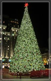 Wholesale Christmas Lights And Trees