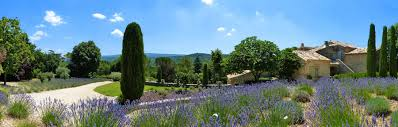 chambre d hotes dans le luberon charming rental and bed and breakfast in the luberon la canove