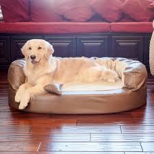 Bolster Dog Bed by Luxury Bolster Orthopedic Dog Bed Noten Animals