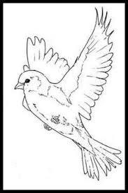 Pin Drawn Bird Head 7