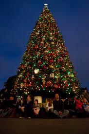 Itwinkle Christmas Tree by Disneyland U0027s Holiday Tweaks Twinkle With Seasonal Magic Hero