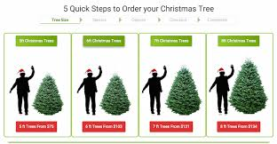 Christmas Tree Types Canada by Christmas Trees And Wreaths Delivered To Your Door U2013 Us Canada