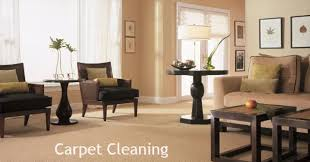 nature s way carpet cleaning sterling heights mi