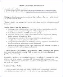 Summary Examples For Resume Fresh Customer Service Elegant Example