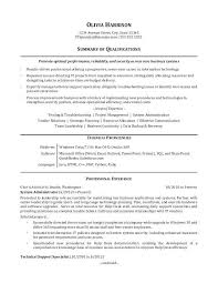 Sample Resume For Professional An It Example Profile About Yourself