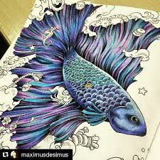 91 Best Animorphia Coloring Book Completed Pages Inspiration Images On Pinterest