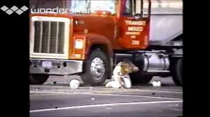 Florence And Normandy LA Riot Beatings | PR0TEST/RI0TS ... Rodney King And The La Riots 7 Key Moments From 1992 Riots Abc7com Anniversary 8 Infamous Videos 25 Years Later Whntcom Gregalan Williams Tried To Be Voice Of Reason In Nbc Dramatic Photos Johnnie Cochrans Case History Proves He Was On Oj Simpsons Rembering The Los Angeles Reginald Denny Attacker Still Coming Terms With How Changed Those Who Were Caught Them Las Vegas