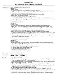 Download Junior Data Analyst Resume Sample As Image File
