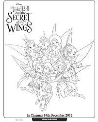 Meet The Winter Fairies