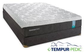 Tempur Pedic Dog Bed by Tempur Pedic Appeal 2 0 Cushion Firm Queen Mattress And Boxspring