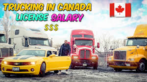 100 Truck Drivers Salary Ing In Canada Punjabi Driver License YouTube