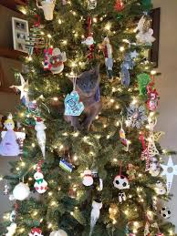 Simons Cat Christmas Tree by Spot The Cat In The Christmas Tree