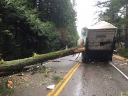 100 Parts Of A Truck Of Bainbridge Island Still Waiting For Power To Be Restored