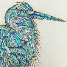 Animal Kingdom Colouring Book Pages Coloring For Adult