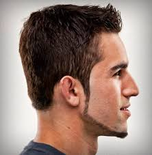 Long Chin Curtain Beard by Chin Strap Beard Wahl Grooming