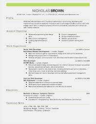 Esthetician Cover Letter Gallery Headline For Resume Inspirational Examples Fresh Professional