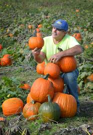 Pumpkin Picking Near Lancaster Pa by Lancaster County Residents Are Picky When It Comes To Pumpkins