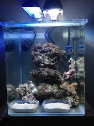 aquarium nano eau de mer nano aquariophilie nano récifal 30l