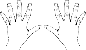 Finger hand clipart Clipground