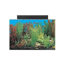 Extra Large Fish Tank Decorations by Large Fish Tanks For Sale Big Fish Tanks U0026 Aquariums Petco
