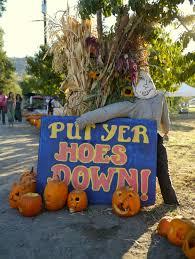 Pumpkin Patch Preschool Santa Rosa Ca by Little Hiccups October 2014