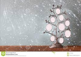l arbre a cadre l image du cadre classique d antiquité de vintage de l arbre