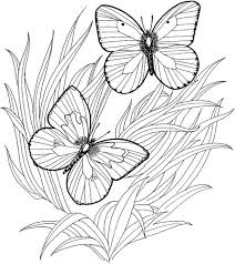 Fancy Free Printable Coloring Pages For Adults Only 11 On Colouring With