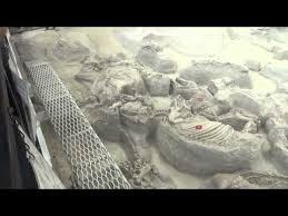 Ashfall Fossil Beds State Historical Park by Park Nebraska