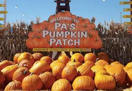 Pumpkin Patch Irvine University by The Best Pumpkin Patches In Southern California