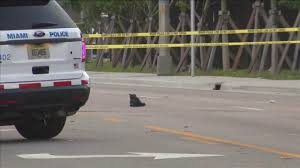 100 Miami Truck Accident Lawyer Woman Injured In Crash On Northwest Seventh Avenue In