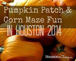 Pumpkin Patch Houston Tx Area by 14 Best Houston Images On Pinterest Houston Houston Food And