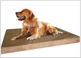 Extra Large Orthopedic Dog Bed by Memory Foam Dog Bed The Solution To Dog Orthopedic Problems