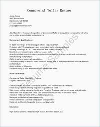Resume Education Format Fresh Examples 0d Profile For Example