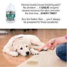 Dog Urine On Hardwood Floors Odor by Bubbas Super Strength Commercial Enzyme Pet Odor