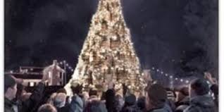 Christmas Tree Amazon Local by 7 Facts About Jack Daniel U0027s Barrel Tree
