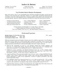 Sample Vice President Of Marketing Resume Top Rated Samples Development