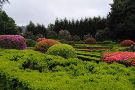 Siempre Te Voy A Querer Garden by La Ruta De Las Camelias Otra Excusa Mas Para Viajar A Galicia De Pazo En Pazo Jpg Mtime U003d1490306429
