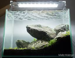 What Is Aquascaping? Planted Tank Contest Aquarium Design Aquascape Awards How To Create Your First Aquascaping Love Pin By Marius Steenblock On Pinterest The Month September 2008 Pinheiro Manso Creating Nature Part 1 Inspiration A Beginners Guide To Aquaec Tropical Fish Style The Complete Brief Progressive Art Of 2013 Xl Pt2 Youtube Aquadesign Dutch Sytle Aquascape Best Images On Appartment Iwagumi Der Der Firma Dennerle Ist Da Aqua Nano