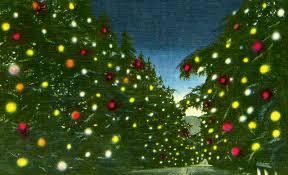 A Color Postcard Of Altadenas Santa Rosa Avenue Transformed Into Christmas Tree Lane Courtesy