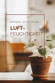 tipps für eine höhere luftfeuchtigkeit um deinen pflanzen
