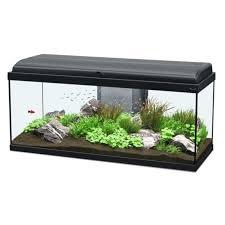 aquarium 100 litres achat aquarium 100 litres pas cher rue du