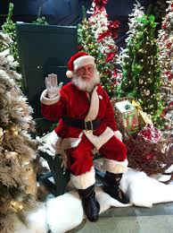 Fred Meyer Artificial Christmas Trees by Events Celebrateknoxville Com